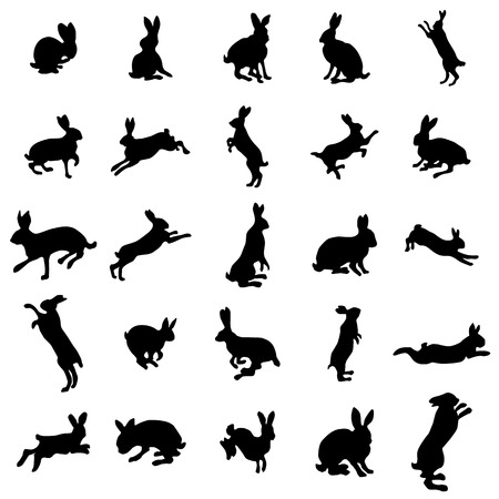 lapin blanc: Silhouettes de lapin fixés sur le fond blanc Illustration