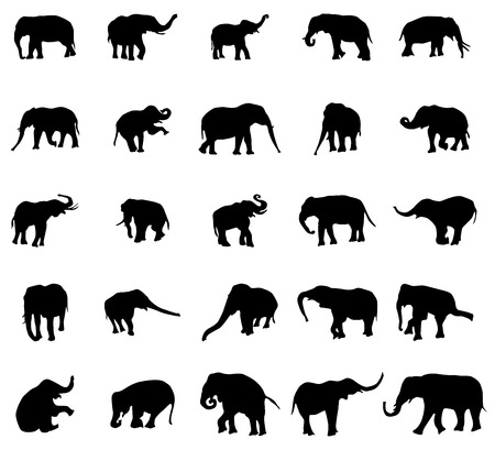 human body silhouette: Elephant silhouettes set isolated on white background Illustration