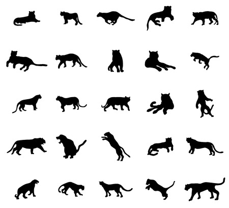 siberian tiger: Tiger silhouettes set isolated on white background