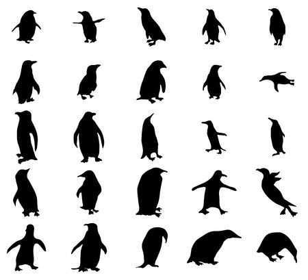 king penguins: Penguin silhouettes set isolated on white background