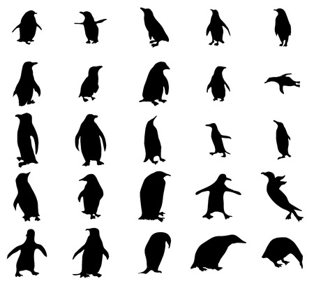 Penguin silhouettes set isolated on white background