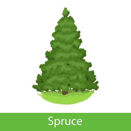 silhoette: Spruce cartoon tree. Single illustration on a white background
