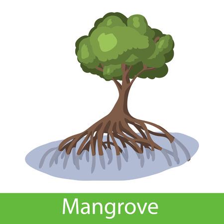Mangrove cartoon tree. Single illustration on a white background Illustration