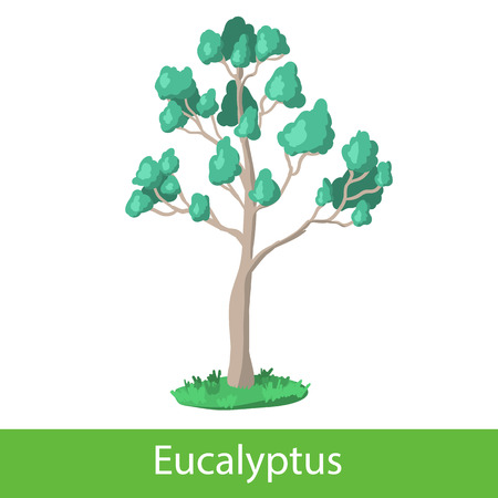 silhoette: Eucalyptus cartoon tree. Single illustration on a white background