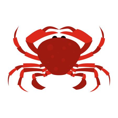cangrejo: Icono rojo plana Cangrejo aislado en fondo blanco