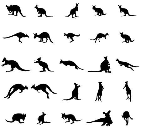 kangaroo white: Kangaroo silhouettes set isolated on white background