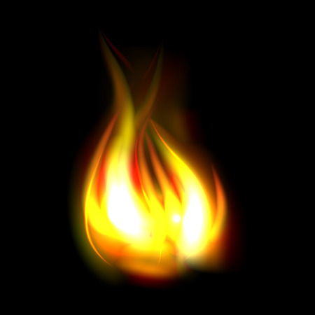 Best realistic fire flame isolated on black background 向量圖像