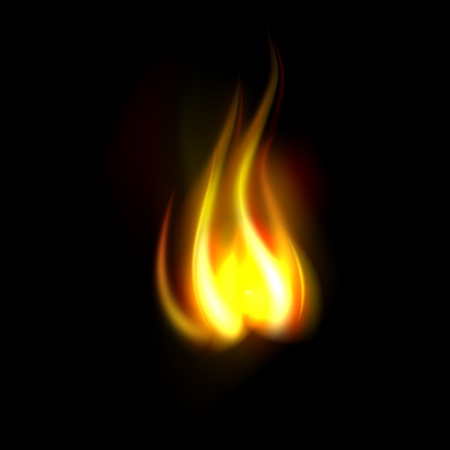Nice realistic fire flame isolated on black background Illustration