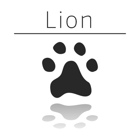 ison: Lion animal track with name and reflection on white background
