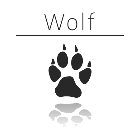 black and white wolf: Wolf animal track with name and reflection on white background