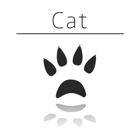 track pad: Cat animal track with name and reflection on white background Illustration
