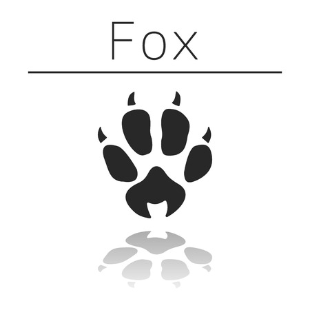 Fox animal track with name and reflection on white background