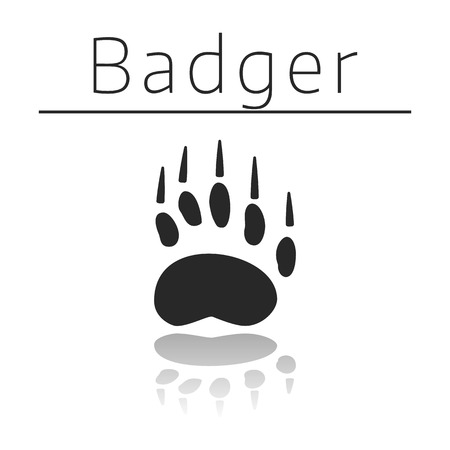 ison: Badger animal track with name and reflection on white background