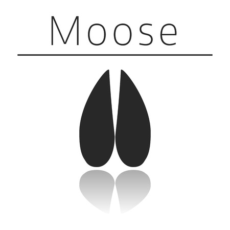 moose symbol: Moose animal track with name and reflection on white background