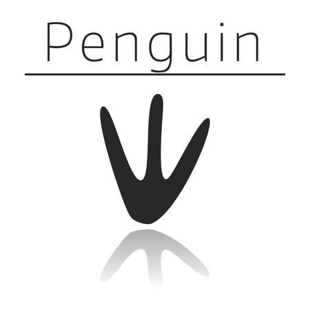 Penguin animal track with name and reflection on white background