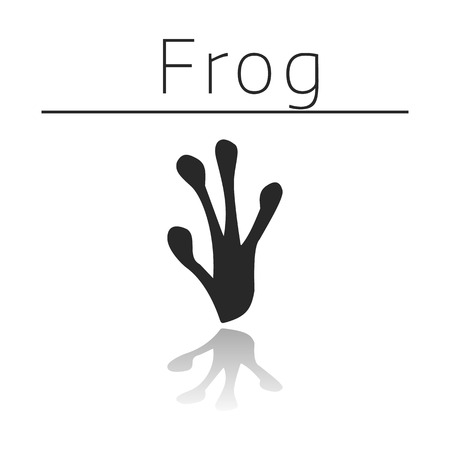 track pad: Frog animal track with name and reflection on white background Illustration