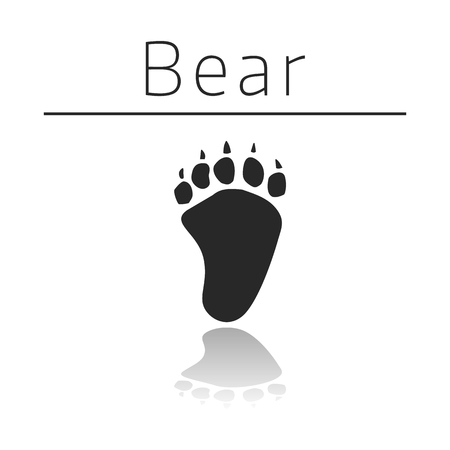 ison: Bear animal track with name and reflection on white background