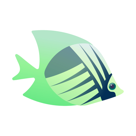angel fish: Tropical angelfish cartoon icon isolated on a white Illustration