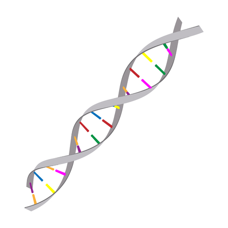 Genetics concept cartoon icon. DNA color symbol on a white background