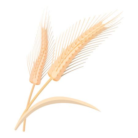 stalks: Two stalks of ripe barley cartoon icon on a white background Illustration