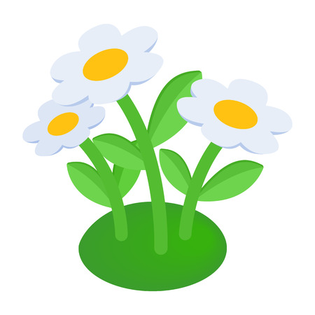 perennial: Garden flowers isometric 3d icon on a white background