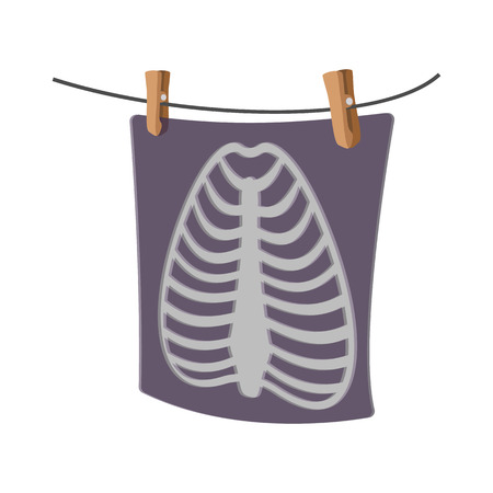 rib cage: X-Ray of a human rib cage cartoon icon on a white background