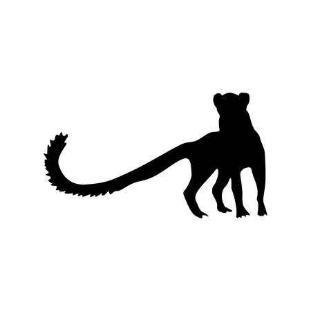 meerkat: Meerkat black silhouette isolated on white background