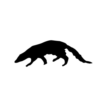 mongoose: Meerkat black silhouette isolated on white background