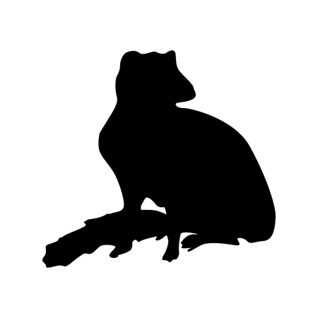 watchful: Meerkat black silhouette isolated on white background