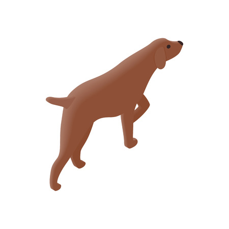 hunting dog: Hunting dog isometric 3d icon on a white background