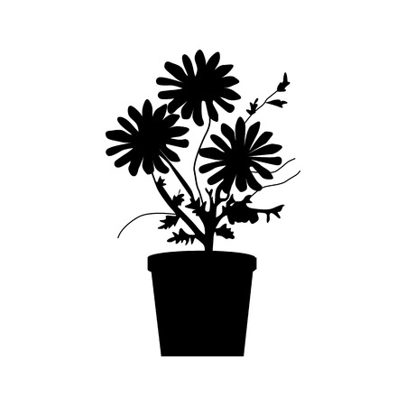 floor plant: Potted plants silhouette isolated on white background Illustration