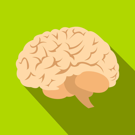 parietal: Human brain flat icon with shadow on green background Illustration