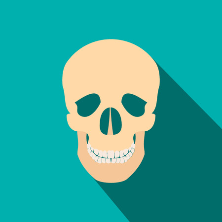 lacrimal: Human skull flat icon with shadow on blue background