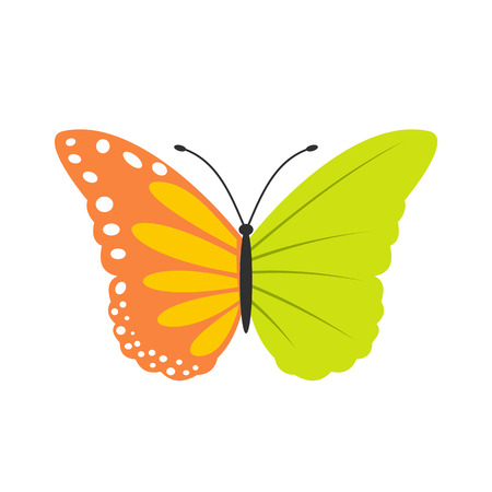 butterfly isolated: Best butterfly ecology flat icon isolated on white background