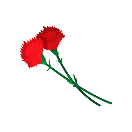 mourn: Two carnations cartoon icon on a white background Illustration