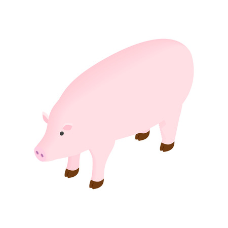 head shot: Pig isometric 3d icon on a white background