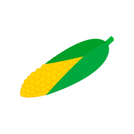corncob: Corncob isometric 3d icon on a white background