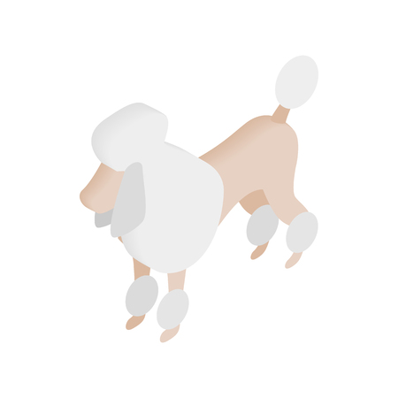 panting: White French poodle isometric 3d icon on a white background