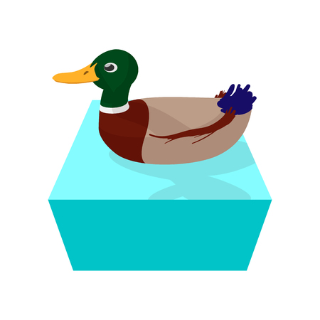 squeak: Cartoon duck floats on water cartoon icon. Hunting symbol isolated on white background