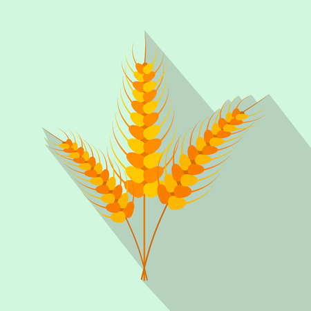 stalks: Three stalks of ripe barley flat icon on a light blue background