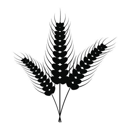 stalks: Three stalks of ripe barley icon. Black simple style Illustration