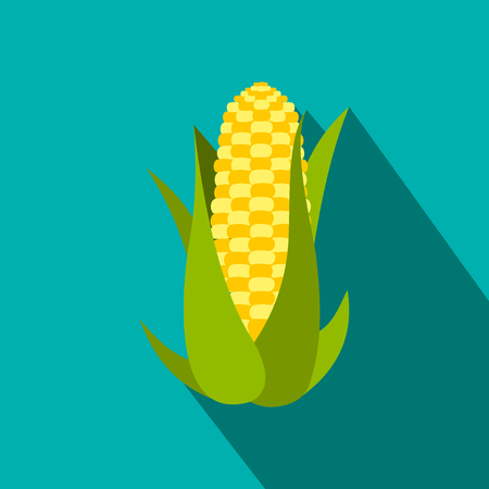 corn on the cob: Corn cob flat icon with shadow on the background