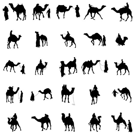 camel silhouette: Camel silhouette set isolated on white background Illustration