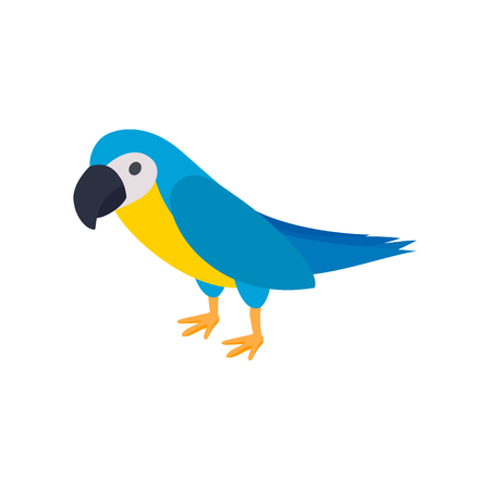 aviary: Blye brazil parrot icon in isometric 3d style on a white background Illustration