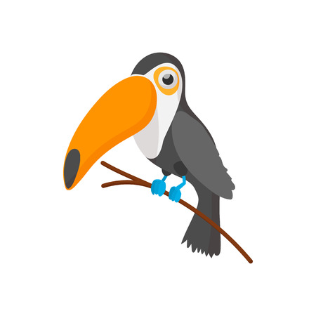 tucan: Toucan icon in cartoon style on a white background