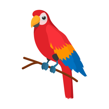 aviary: Red brazil parrot icon in cartoon style on a white background