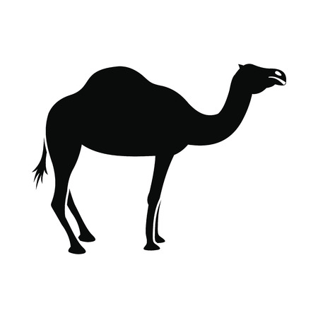 bedouin: Camel icon in simple style isolated on white background Illustration