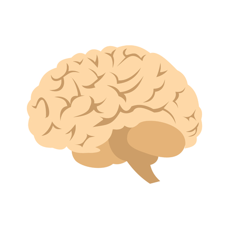 frontal lobe: Human brain icon in flat style isolated on white background Illustration