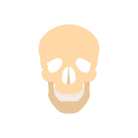 lacrimal: Human skull icon in flat style isolated on white background
