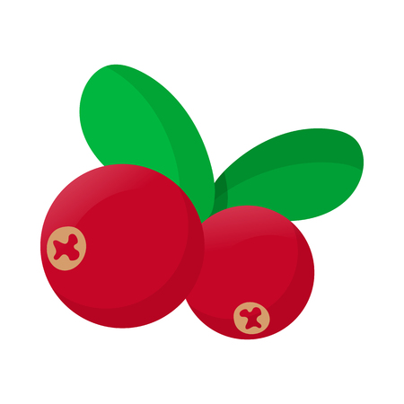 cranberry fruit: Cranberry icon in cartoon style on a white background Illustration